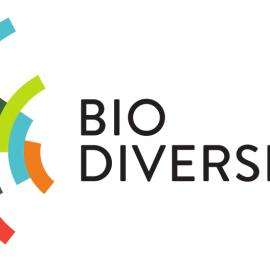 Naturschutz – Kernforderungen um Biodiversitätsverlust bis 2030 zu stoppen
